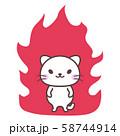 白猫【怒り】 58744914
