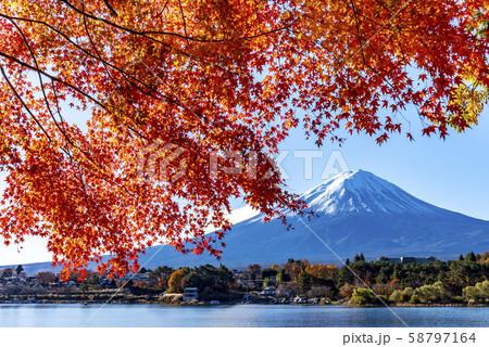 富士山 紅葉 58797164