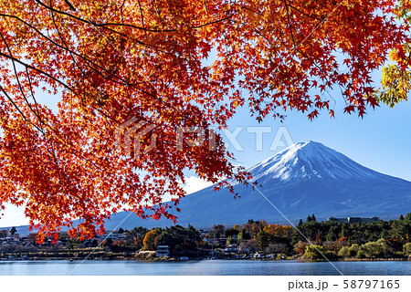 富士山 紅葉 58797165