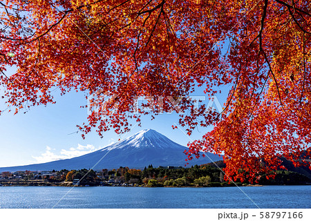 富士山 紅葉 58797166