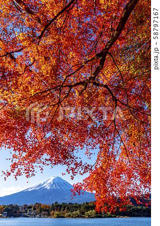 富士山 紅葉 58797167