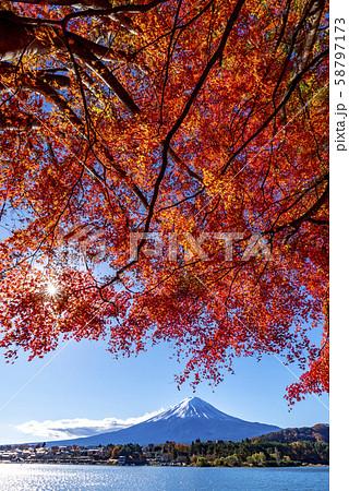 富士山 紅葉 58797173