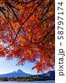 富士山 紅葉 58797174
