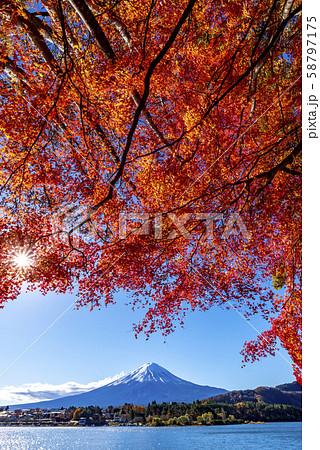 富士山 紅葉 58797175