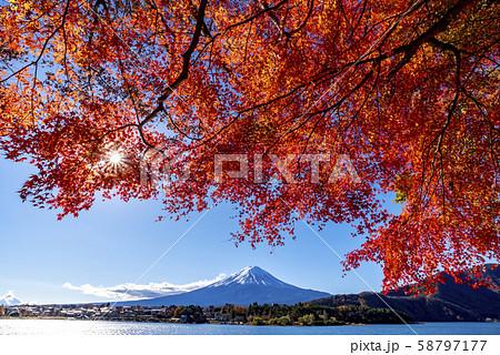 富士山 紅葉 58797177