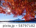 富士山 紅葉 58797182