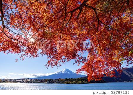 富士山 紅葉 58797183