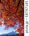 富士山 紅葉 58797185