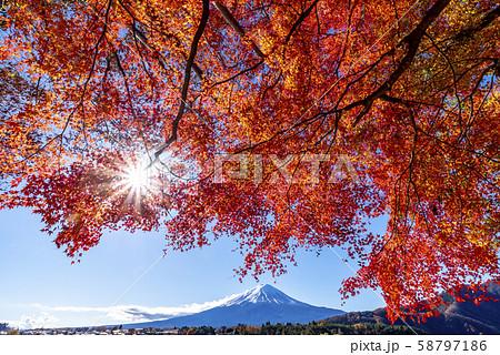 富士山 紅葉 58797186