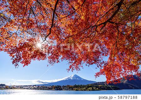 富士山 紅葉 58797188