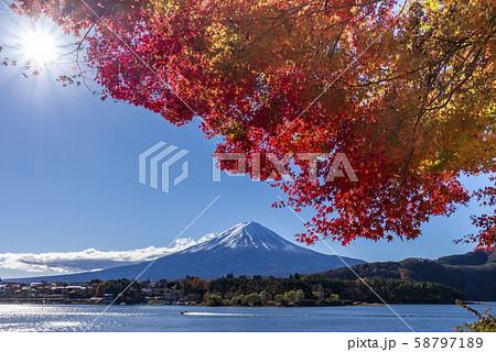 富士山 紅葉 58797189