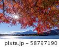 富士山 紅葉 58797190