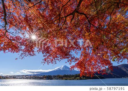 富士山 紅葉 58797191