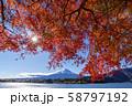 富士山 紅葉 58797192