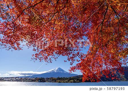 富士山 紅葉 58797193