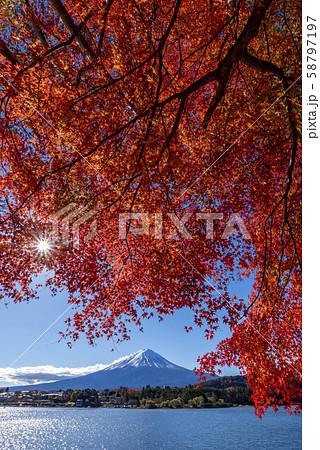 富士山 紅葉 58797197