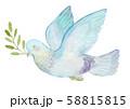 ハトとオリーブ 水彩 58815815