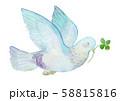 ハトと四つ葉のクローバー 水彩 58815816