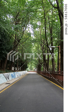 韓国の風景 釜山 58817666