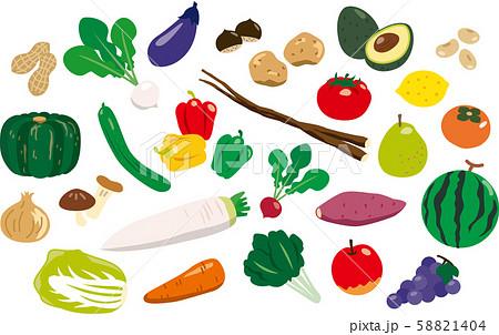 食材 野菜 58821404