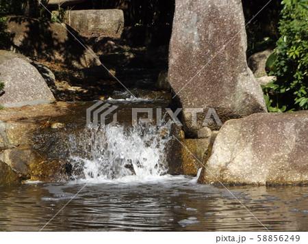 稲毛海浜公園の小さな滝 58856249