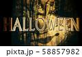 Halloween Creepy 3D Illustration with Text 58857982