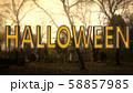 Halloween Creepy 3D Illustration with Text 58857985