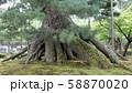 兼六園 58870020