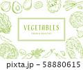 野菜の手描きイラスト フレーム 58880615