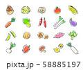 手描き 野菜 果物 セットイラスト 58885197