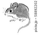 水墨画 鼠 58892202