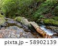 長野県辰野町 国天然記念物 横川渓谷 蛇石 58902139