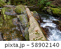 長野県辰野町 国天然記念物 横川渓谷 蛇石 58902140