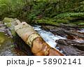 長野県辰野町 国天然記念物 横川渓谷 蛇石 58902141