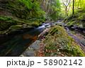 長野県辰野町 国天然記念物 横川渓谷 蛇石 58902142