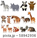 A Set of Animals on White Background 58942936
