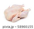 Raw fresh chicken 58960155