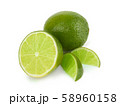 Lime fruit isolated 58960158