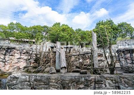 【神奈川県】よこはま動物園ズーラシア ニホンザルの猿山 58962235