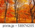 【福島】大内宿 氷玉峠 紅葉 58974205