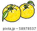 柚子 D手描き 58978537