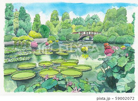 水彩画 みずの森 59002072