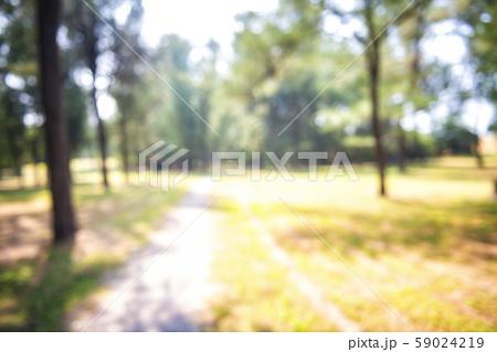 Blur park garden tree in nature background 59024219