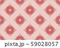和柄 花 菊背景 59028057