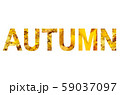 Word AUTUMN with a bright leaves of maple tree 59037097