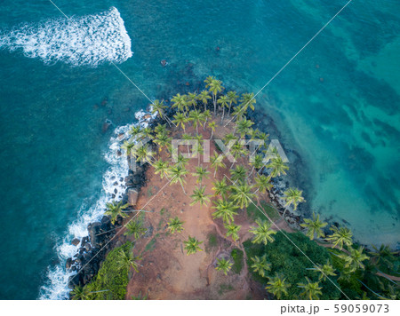 Aerial view of coconut trees at seaside theの写真素材 [59059073 ...
