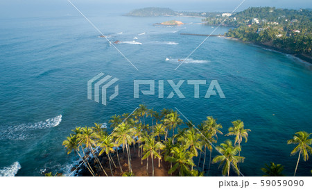 Aerial view of coconut trees at seaside theの写真素材 [59059090 ...