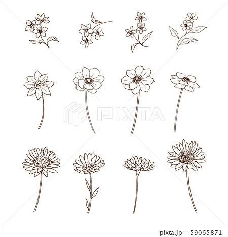 花 ペン画 セット 59065871