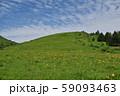 車山高原のニッコウキスゲ 59093463
