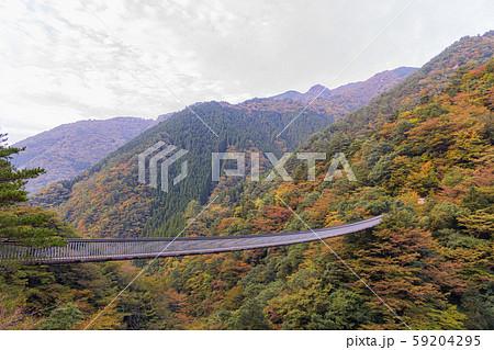 五家荘 梅の木轟公園吊橋 59204295